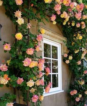 Красивые дома 160 интересных разнообразных фото