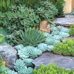 красивые композиции из садовых цветов
