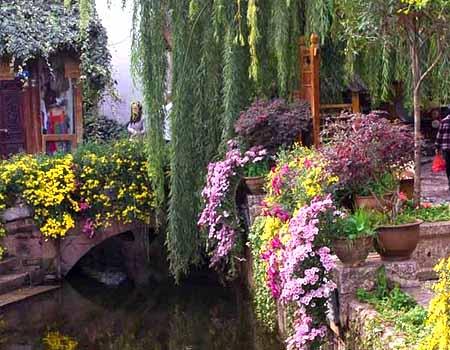 Необычный водоем в саду