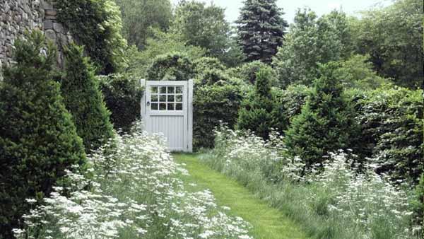 белый лунный сад