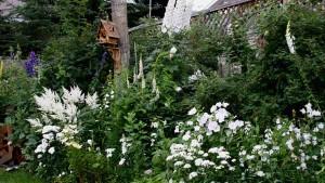 ланшафтный дизайн белого сада вдоль забора