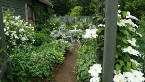 белый ландшафтный дизайн сада