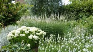 ландщафтный дизайн для белого сада