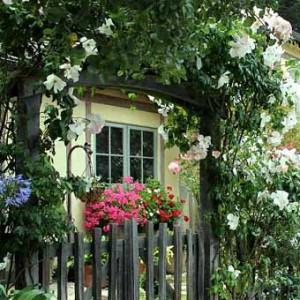 заборы с цветами в саду фото
