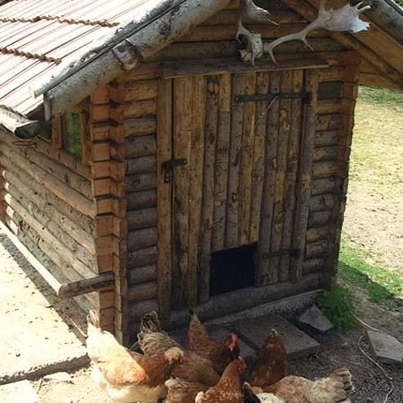 Летняя кухня на даче своими руками из подручных фото 283
