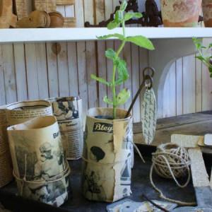 Хранение семян в дачном сарае