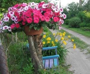дача с цветниками