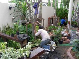 дизайн маленького сада своими руками