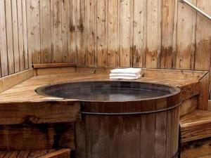 баня на даче фото