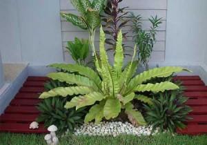выбираем растения для ландшафтного дизайна маленького участка