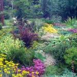 как сделать красивую клумбу в саду своими руками