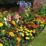 букетные клумбы в саду