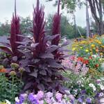 необычные варианты цветника на даче