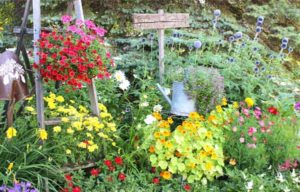 красивые клумбы и цветники из подручных материалов фото