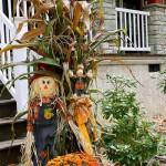 как украсить осенью сад