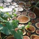 садовая дорожка из лакированных деревянных спилов