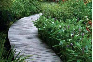 садовые дорожки из дерева в саду