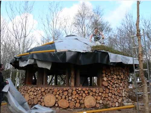 как сделать зеленую крышу в дачном доме
