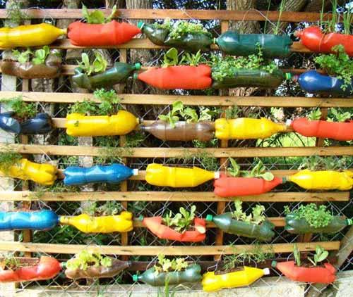 вертикальный сад из пластиковых бутылок на даче