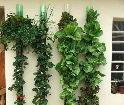 как из пластиковых бутылок сделать вертикальный сад на даче