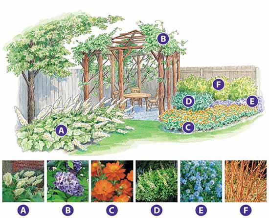 интересный цветник в саду схема