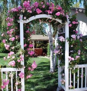 как самому сделать красивую арку из роз