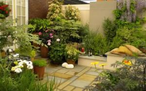 секретный сад в ландшафтном дизайне