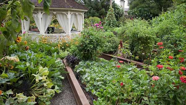 Сайт о даче, саде и огороде 70