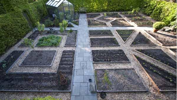 дизайн огорода делаем грядки