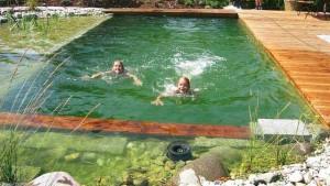 купальный пруд своими руками