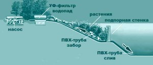 схема для пруда своими руками
