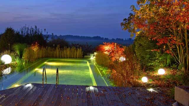 садовый пруд фото