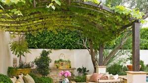 декоративные шпалеры для винограда своими руками