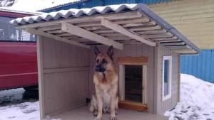 будка для собаки своими руками чертежи