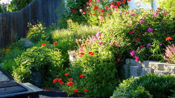огород без хлопот