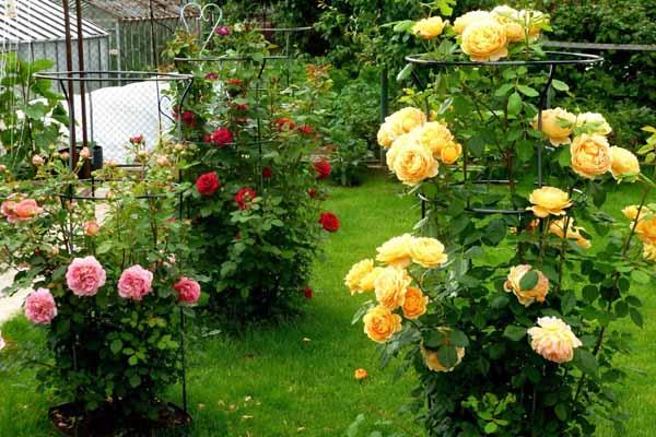 Дизайн сада своими руками: фото и интересные идеи 85