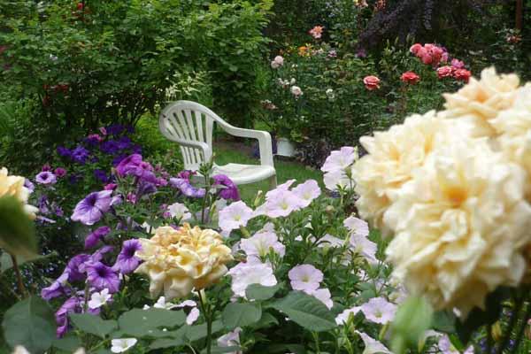 Дизайн сада своими руками: фото и интересные идеи