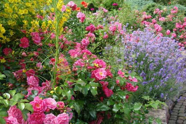 Дизайн сада своими руками: фото и интересные идеи 45