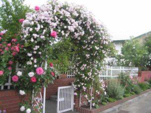 дизайн огорода и сада своими руками фото