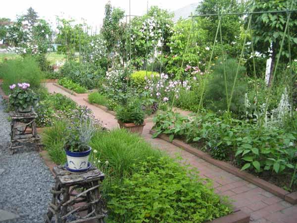 100 лучших идей для сада, дачи и огорода 10