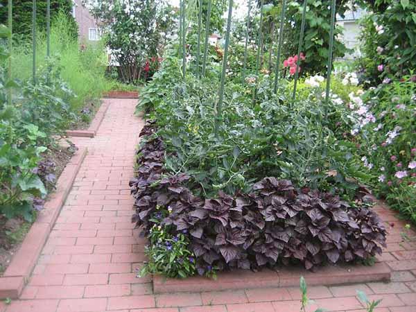 Как украсит сад огород своими руками фото 305