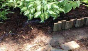 садовый бордюр из дерева на даче