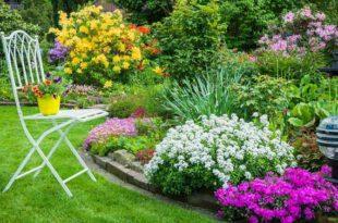 садовый бордюр в ландшафтном дизайне