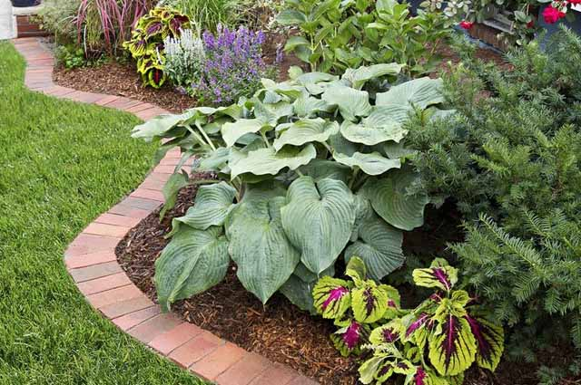 садовый бордюр из кирпича