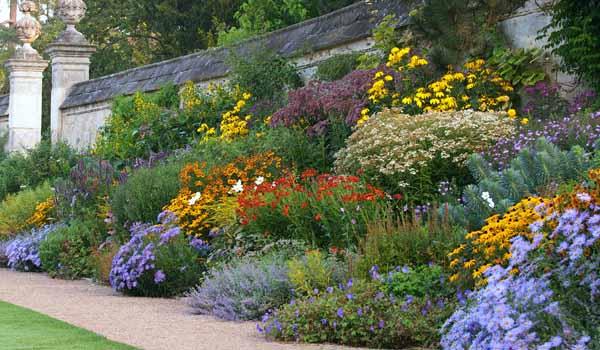 клумбы цветущие все лето фото