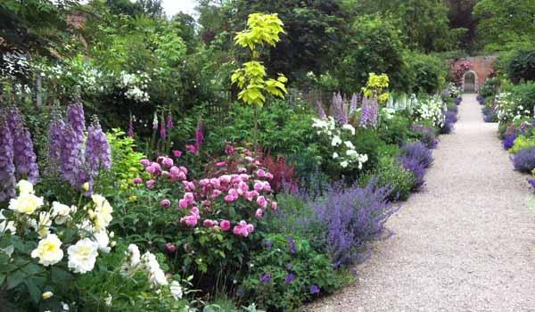 как сделать клумбу цветущую все лето
