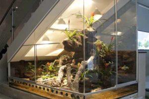 как необычно организовать место под лестницей. зимний сад