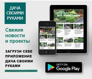 идеи для дачи Android