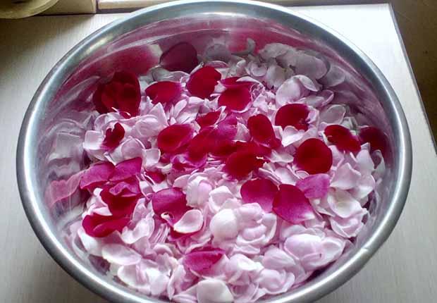 Варенье из чайной розы. Шаг 1.