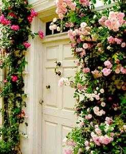 оформление розами входа в дом